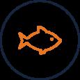 Settefiskanlegg og smoltanlegg - Totalenteprise fisk